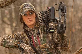 10 Best Compound Bows for Hunting